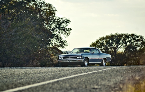 Picture road, the sky, trees, lights, Chevrolet, wheel, 1966, Chevelle, side