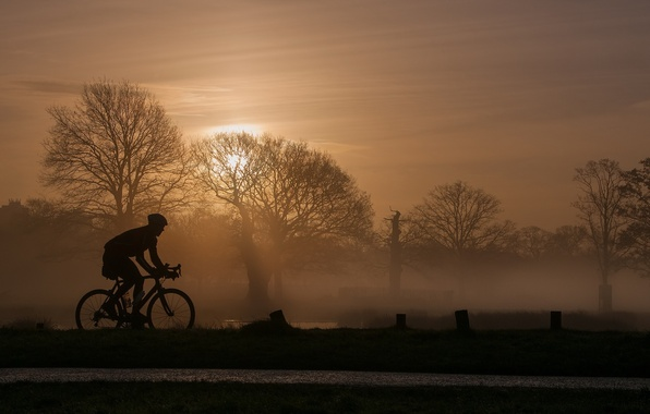 Picture bike, sport, the evening