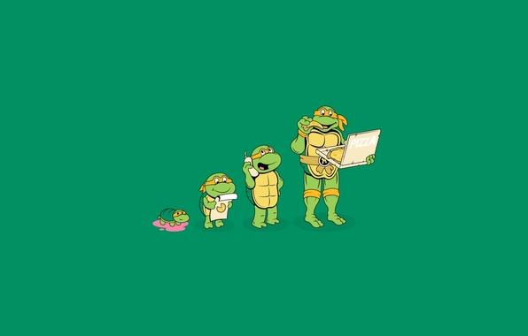 Picture minimalism, pizza, teenage mutant ninja turtles, Michelangelo