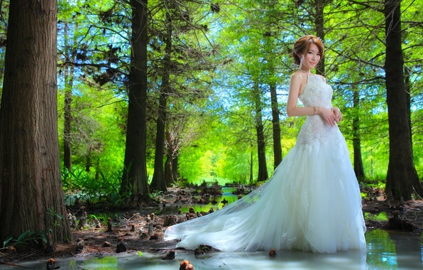 Picture forest, water, girl, trees, dress, Asian, the bride