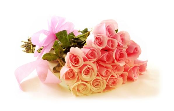 Picture roses, bouquet, gentle