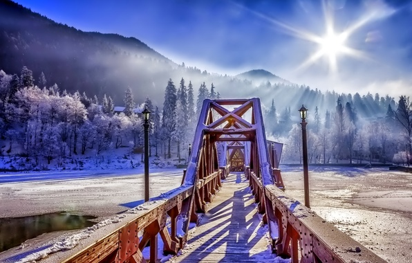 Picture winter, forest, the sky, snow, bridge, nature