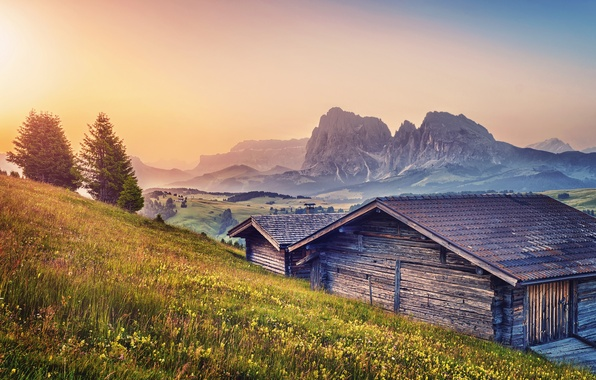 Picture summer, mountains, home, Alps, meadows