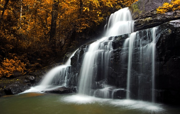 Picture autumn, forest, leaves, trees, stones, waterfall, yellow