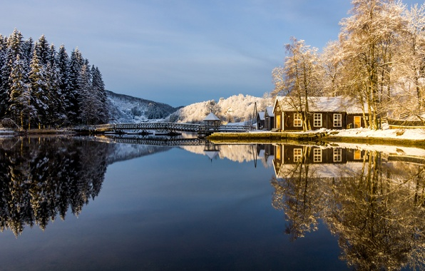 Picture winter, frost, forest, the sky, snow, trees, lake, house, reflection, the bridge, gazebo