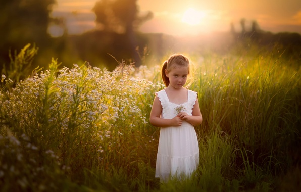 Picture field, summer, grass, girl