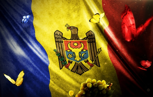 Picture red, design, yellow, blue, flag, moldova, mocanu, marin