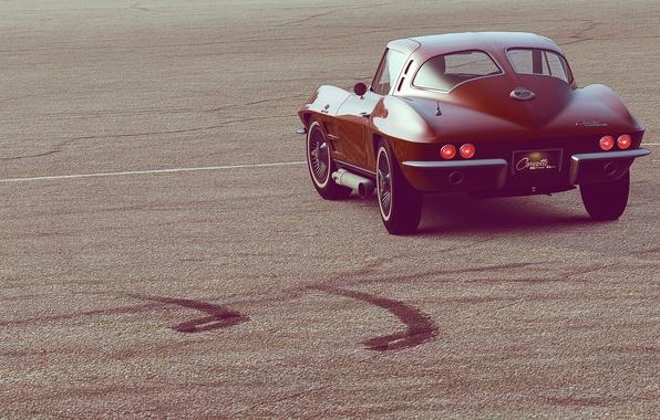 Picture auto, view, Corvette