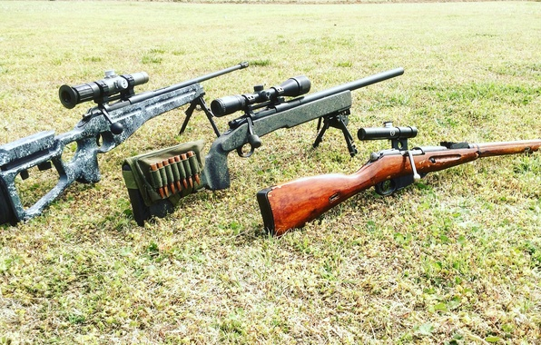 Picture grass, weapons, optics, sniper rifle