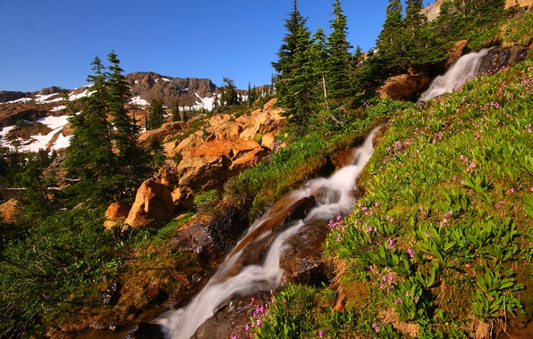 Picture the sky, snow, trees, flowers, mountains, stream, stones, waterfall, stream, slope