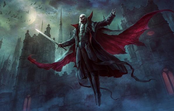 Picture night, castle, darkness, the moon, dark, sword, vampire, bats, cloak, the full moon