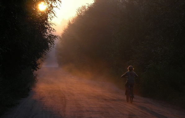 Picture road, forest, bike, dawn, silence, Morning, girl