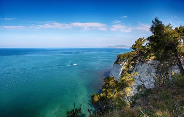 Picture sea, trees, rocks, shore, ship, yacht