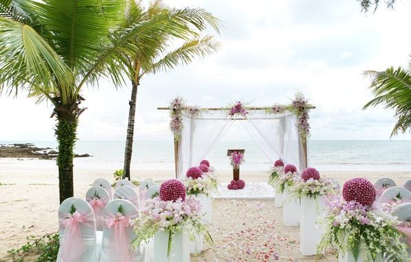 Picture sea, flowers, nature, tropics, coast, gazebo, vases