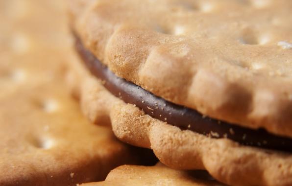 Picture macro, food, chocolate, cookies, cream, dessert, food, 1920x1200, macro, sweet, chocolate, sweet, cream, dessert, cookies