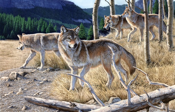Picture autumn, forest, yellow grass, mountain, wolves, painting, dry, Al Agnew, Hungry, a pack of wolves