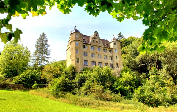 Picture greens, grass, trees, branches, castle, foliage, Germany, the bushes