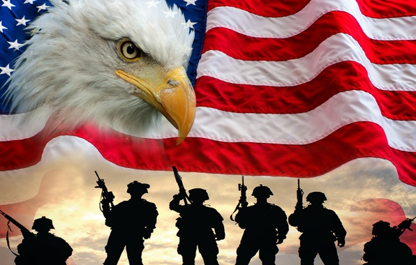 Picture bird, flag, soldiers