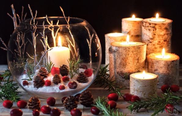 Picture branches, candles, bumps, composition, cranberry