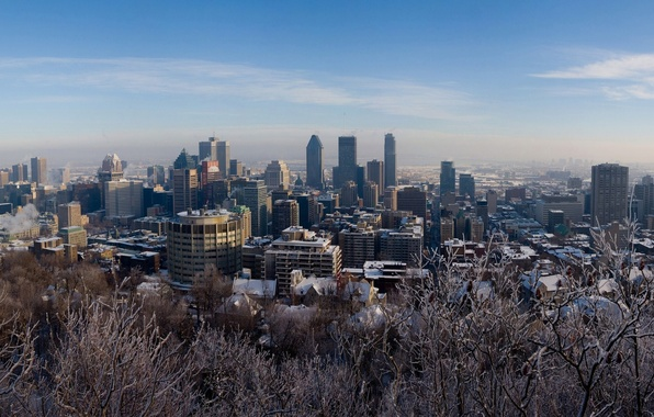 Picture winter, snow, trees, Montreal, Canada