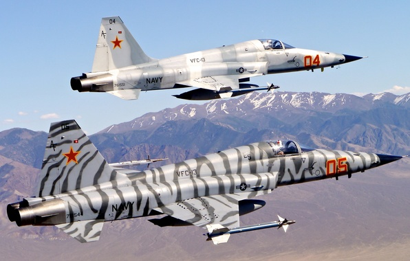"""Picture fighter, multipurpose, """"Freedom Fighter"""", Tiger II, Northrop F-5"""