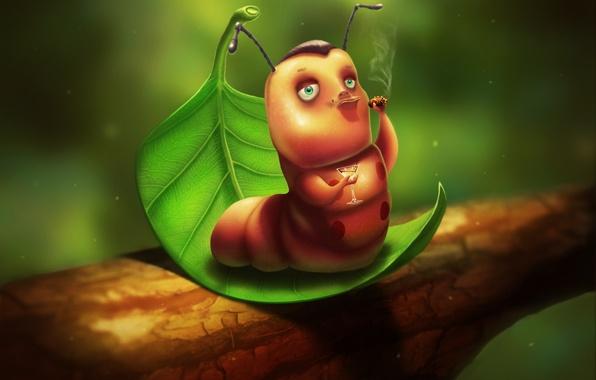 Picture caterpillar, sheet, figure, graphics, glass, cigar, macho