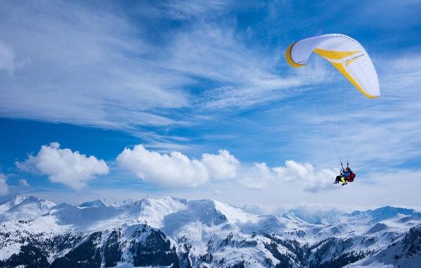 Picture pilot, paraglider, tandem, extreme sports