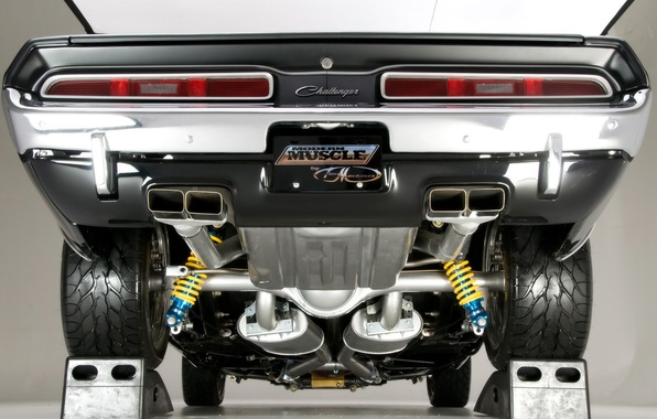 Picture Challenger, Dodge, 1971, back, the bottom