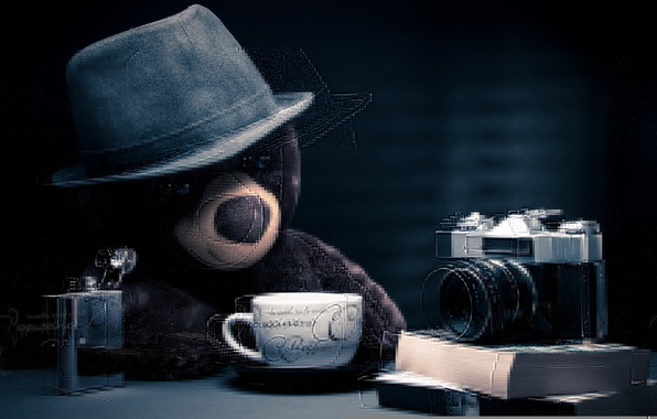 Picture toy, bear, the camera, Picnic