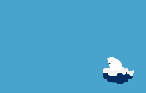 Picture animal, paint, bear, floe, polar bear