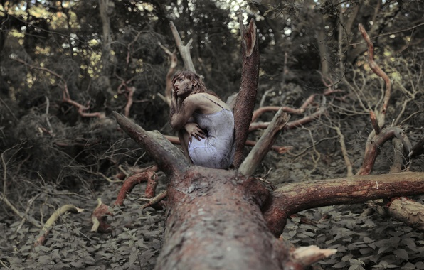Picture forest, girl, tree, dirt, nettle, The Spriggan