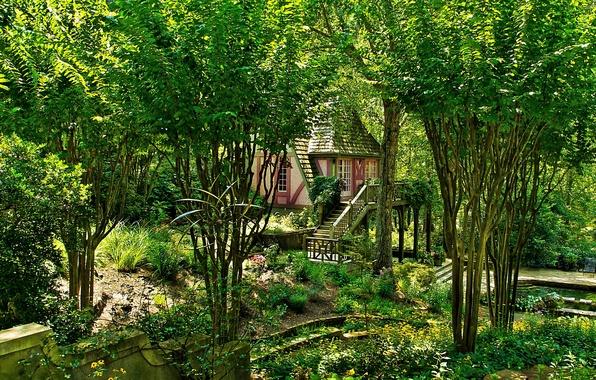 Picture photo, Nature, Trees, Garden, USA, Ball Ground Gibbs Gardens