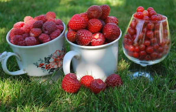 Picture grass, macro, berries, raspberry, glass, strawberry, Cup, mugs, red, currants, cottage
