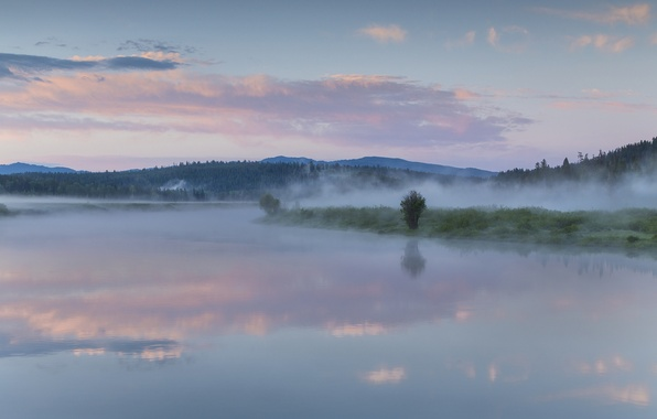 Picture forest, the sky, clouds, fog, lake, reflection, morning, Wyoming, USA, USA, forest, Wyoming, sky, clouds, …