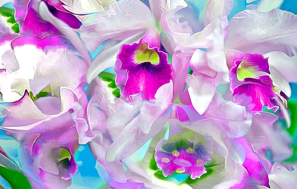 Picture the sky, flowers, nature, rendering, petals