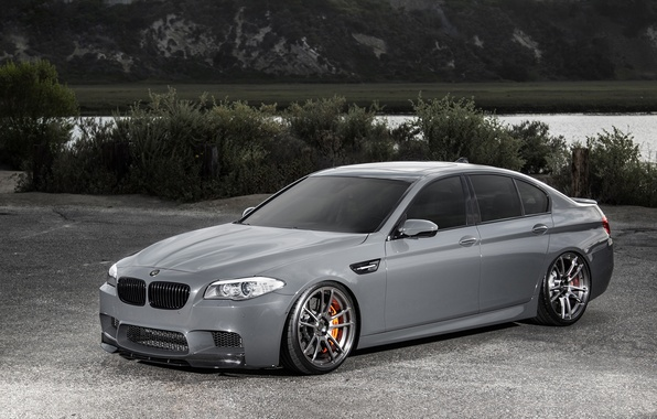 Picture BMW, BMW, F10