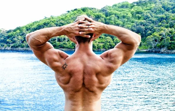Picture men, pose, back, bodybuilder