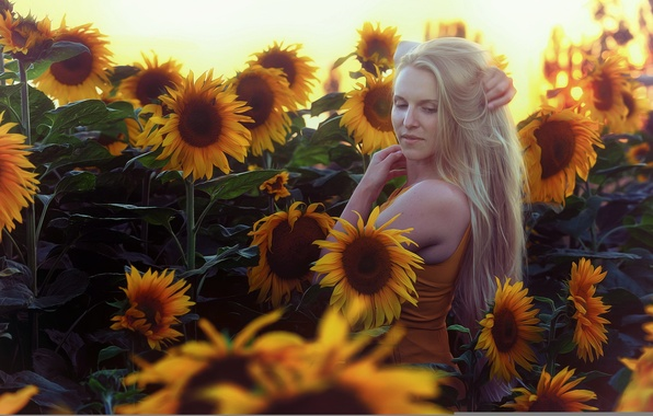 Picture summer, girl, sunflowers