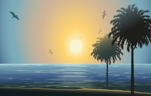 Picture sea, the sun, sunset, palm trees, seagulls
