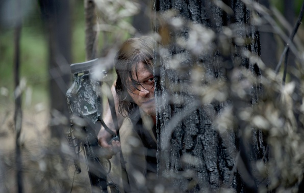 Picture ambush, The Walking Dead, The walking dead, Norman Reedus, Daryl