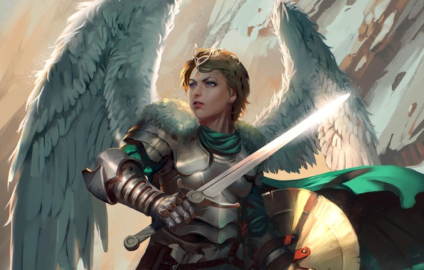 Picture look, fiction, wings, sword, armor, art, shield, Valkyrie