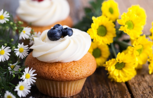 Picture flowers, berries, chamomile, blueberries, sweets, cream, dessert, cakes, cupcake