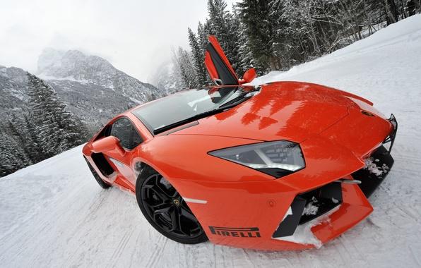 Picture snow, sports car, view, pug, Lamborghini LP700-4 Aventador