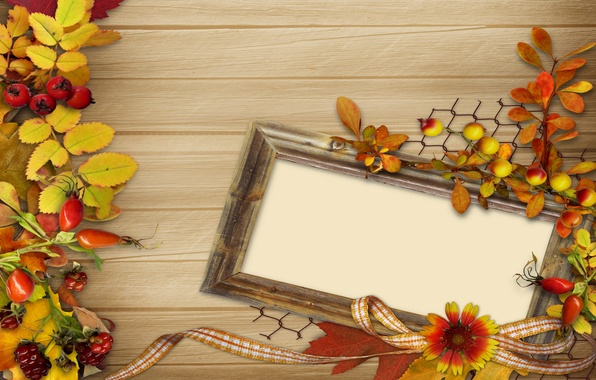 Picture autumn, leaves, flowers, berries, frame, vintage, background, autumn, leaves