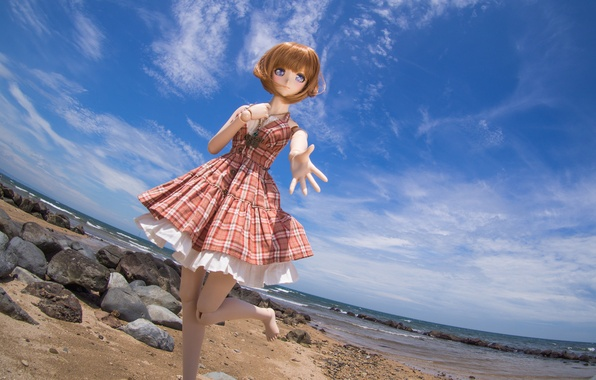Picture sea, the sky, nature, stones, toy, doll