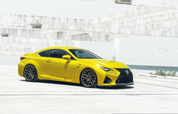 Picture car, Lexus, William Stern, RC F