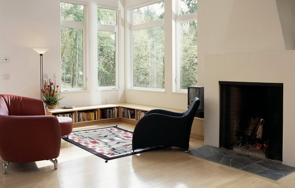 Picture books, lamp, chair, window, fireplace, living room