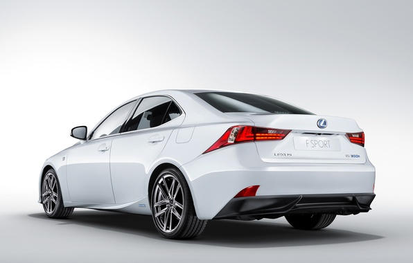 Picture white, background, Lexus, Lexus, back, F-Sport, IS 300h
