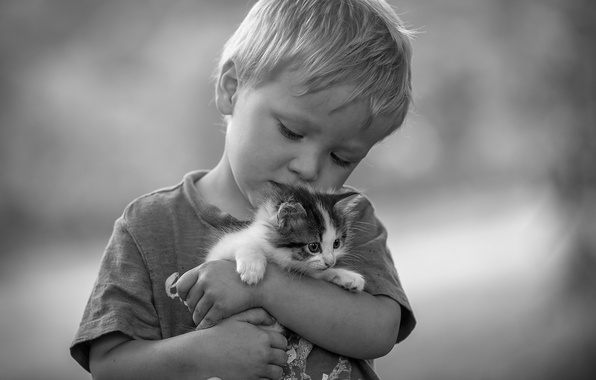 Picture love, mood, boy, black and white, friendship, kitty, friends, monochrome