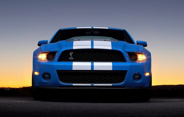 Picture Ford, shelby, gt 500